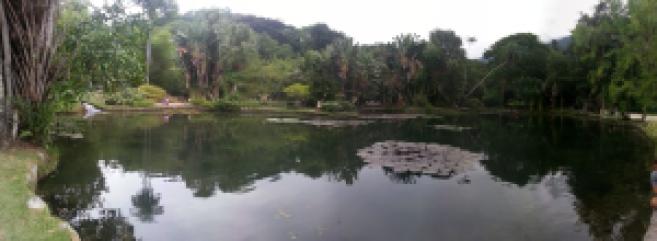 Botanic Garden Rio
