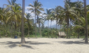 Palms Beach Colombia